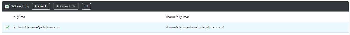 DirectAdmin Hosting FTP Hesabı Silme