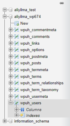 PHPMyAdmin ile Unutulan WordPress Şifresi Değiştirme 5
