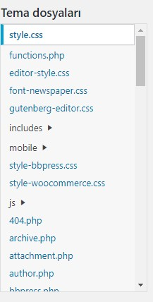 Wordpress Siteye Kod Ekleme 3